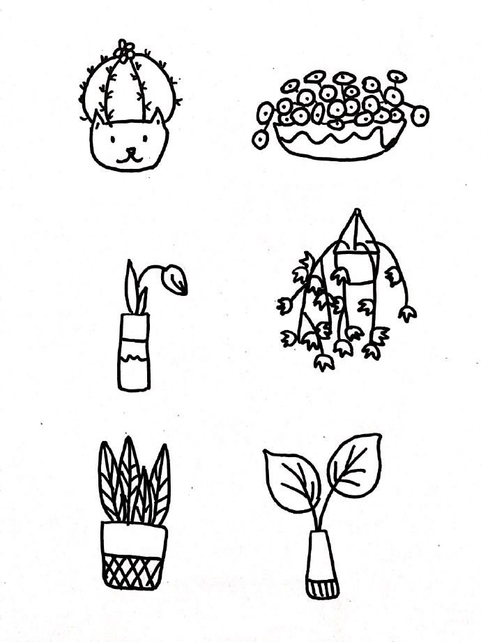 枫叶怎么画简单又漂亮,最简单的枫叶简笔画