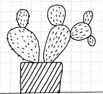 幼儿植物简笔画大全,各种盆栽植物简笔画