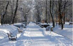 描写冬天的作文600字