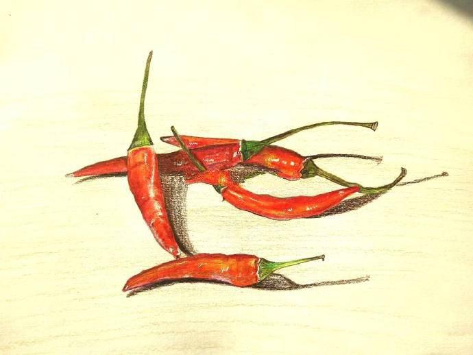 彩铅画教程步骤图,小辣椒