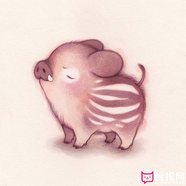 高清萌宠壁纸大全,很可爱的小动物萌图