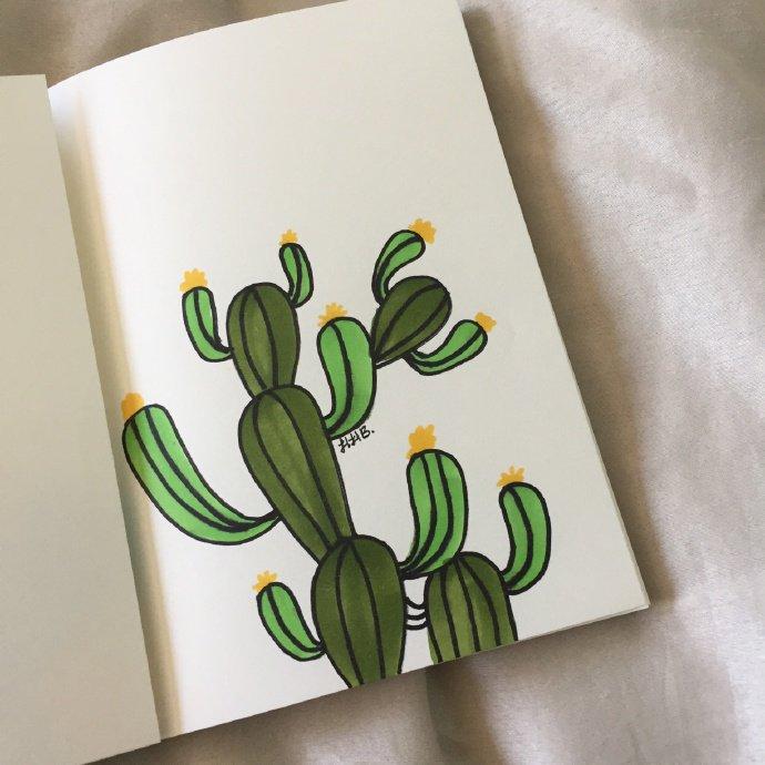 椰子树怎么画,椰子树简笔画带颜色