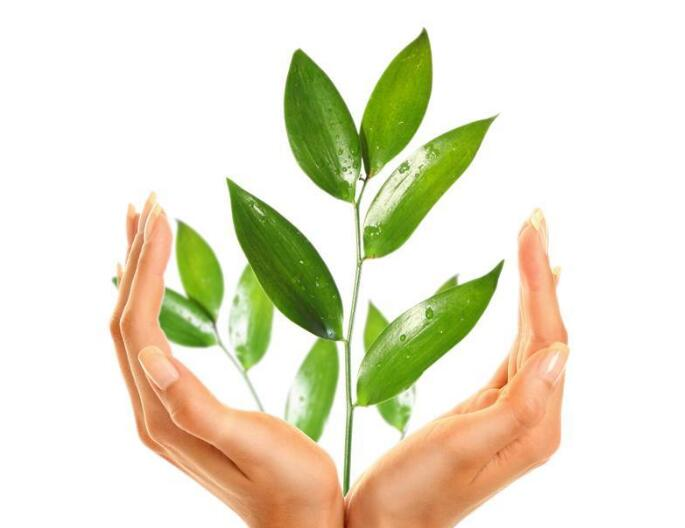 关于绿色环保的手抄报,节能环保手抄报内容大全