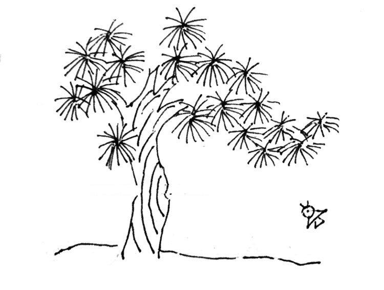 花草简笔画大全带颜色,花草树木简笔画彩色的