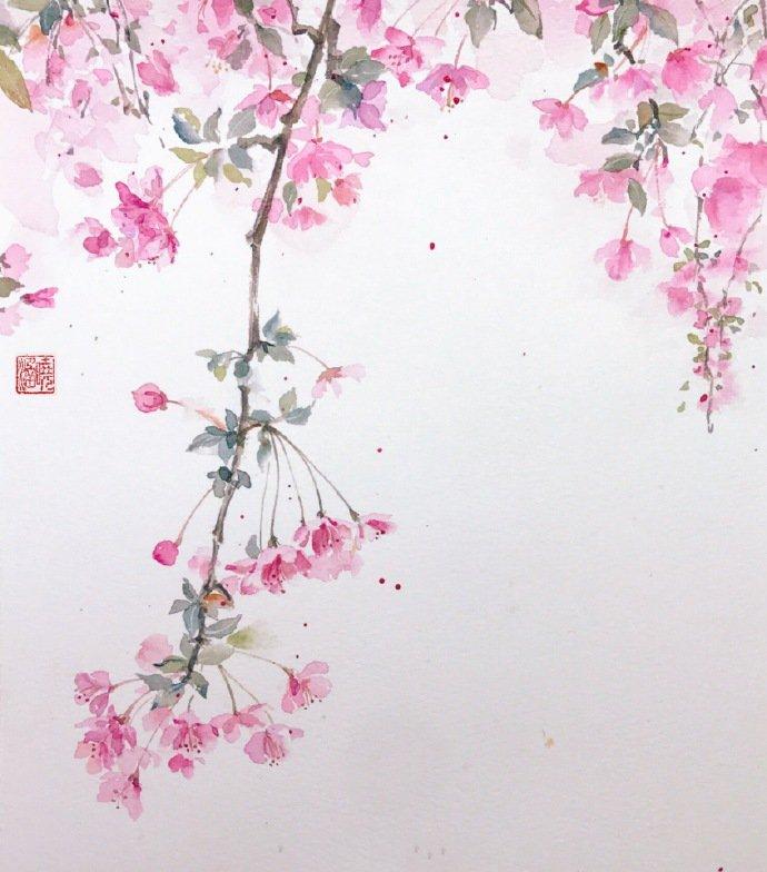唯美好看的水彩画教程,一树梅花