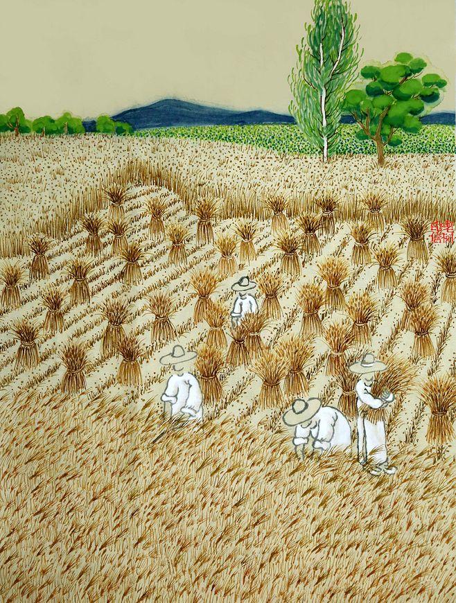 芒种中国风插画