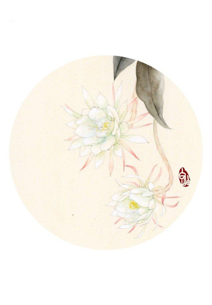 水彩花卉教程步骤图片,夹竹桃