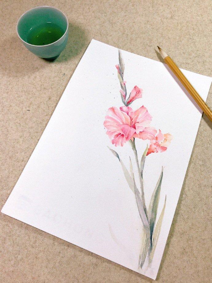 水彩画入门一步一步教,超美垂丝海棠水彩画教程