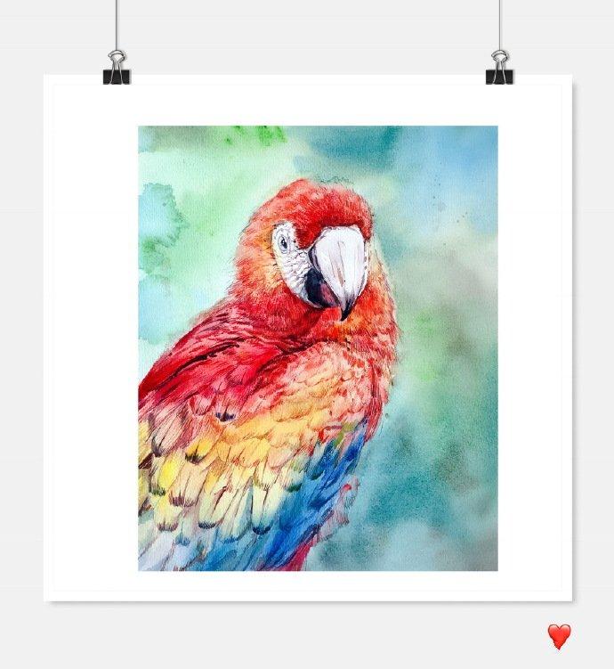 水彩花卉教程步骤图片,一花两色浅深红