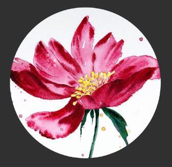简单唯美的水彩画教程,格桑花水彩画