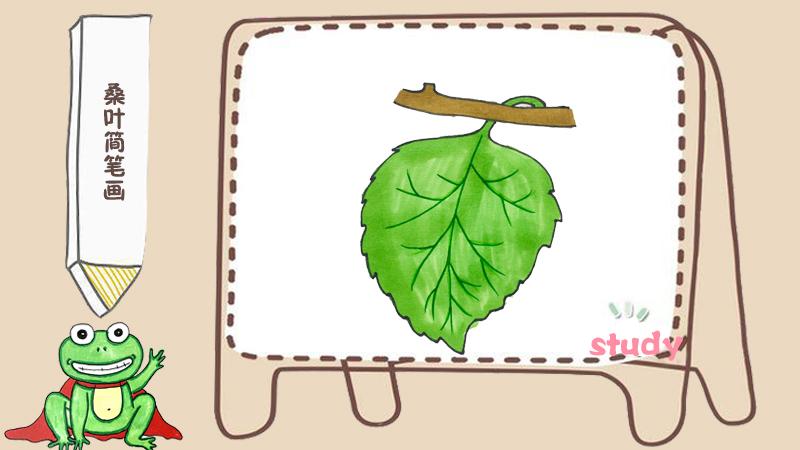 一棵玉米简笔画