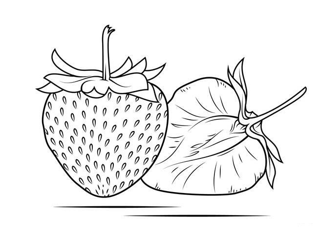 水果简笔画图片大全,葡萄简笔画