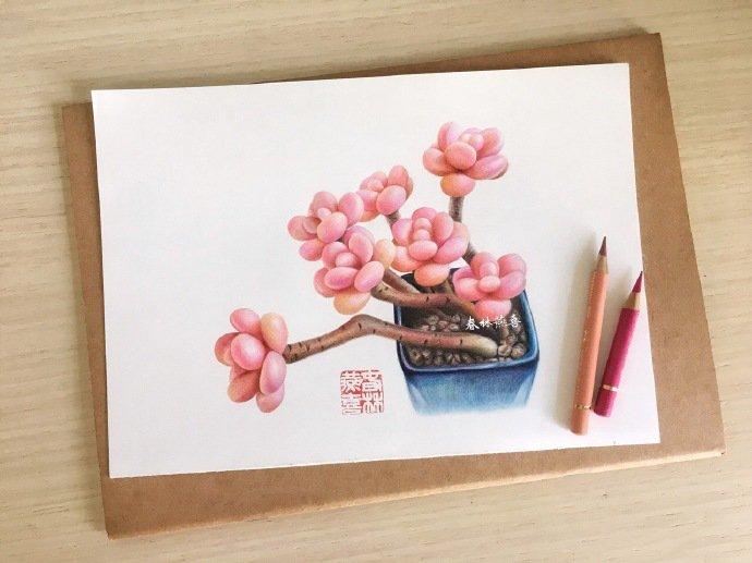 彩铅画多肉教程步骤图,桃之卵彩铅画