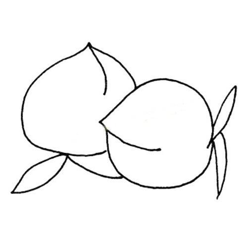 简单的水果简笔画图片,树莓简笔画
