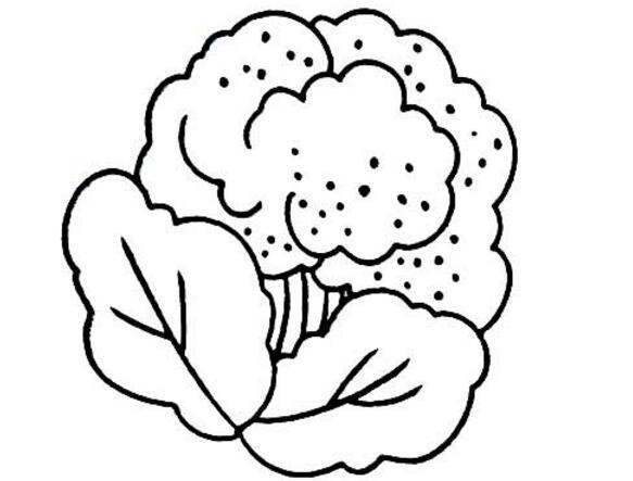 扁豆简笔画,果蔬简笔画