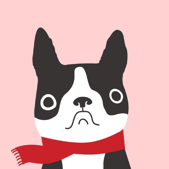 日本柴犬柴柴berry可爱头像大全,超治愈的笑容