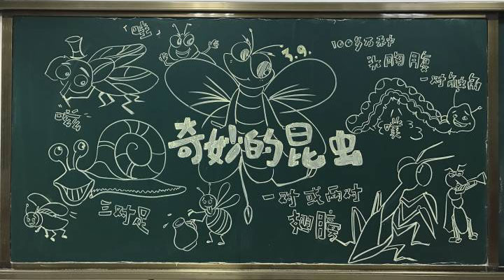 超可爱的小学生黑板报图片,我们的世界