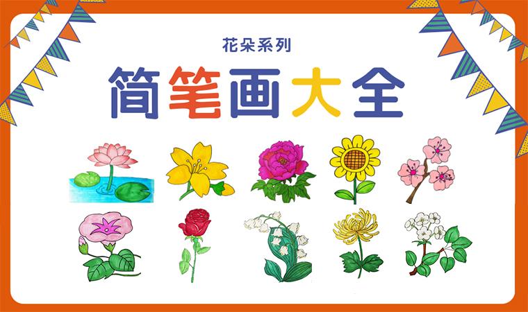 简笔画图片大全花朵,花朵的简笔画简单又漂亮