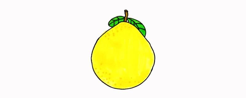 柚子怎么画