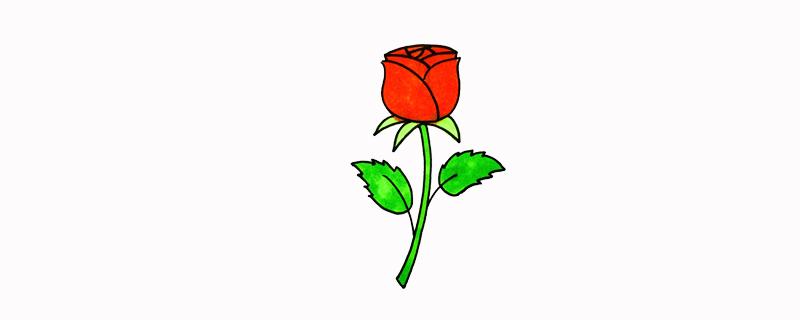 儿童画玫瑰花简单画法
