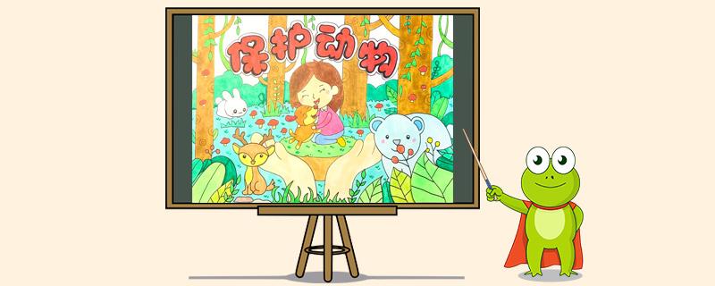 保护动物的海报怎么画
